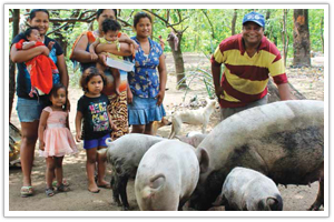 Amigos for Christ Farm Animals for the Poor - Nicaragua