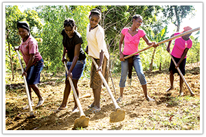 Kobonal Agriculture, Haiti
