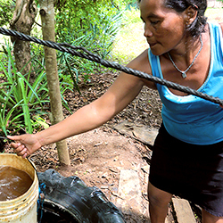 Clean Water Ave Maria