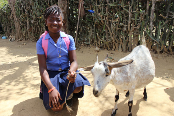 The Kobonal Haiti Mission's animal husbandry program is one of many Cross Catholic sponsored initiatives helping the poor climb out of poverty.