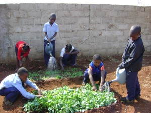 Kids in Zambia participate in an after-school farming project.