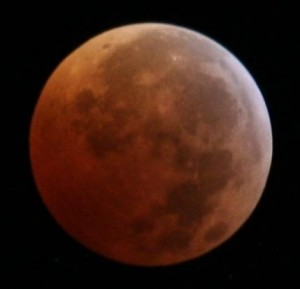 Lunar Eclipse as seen from Orlando, FL