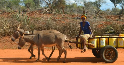 A woman in rural Kenya transporting water
