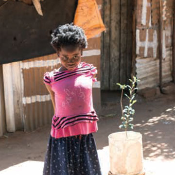 Association Cross Mozambique Housing Ministry